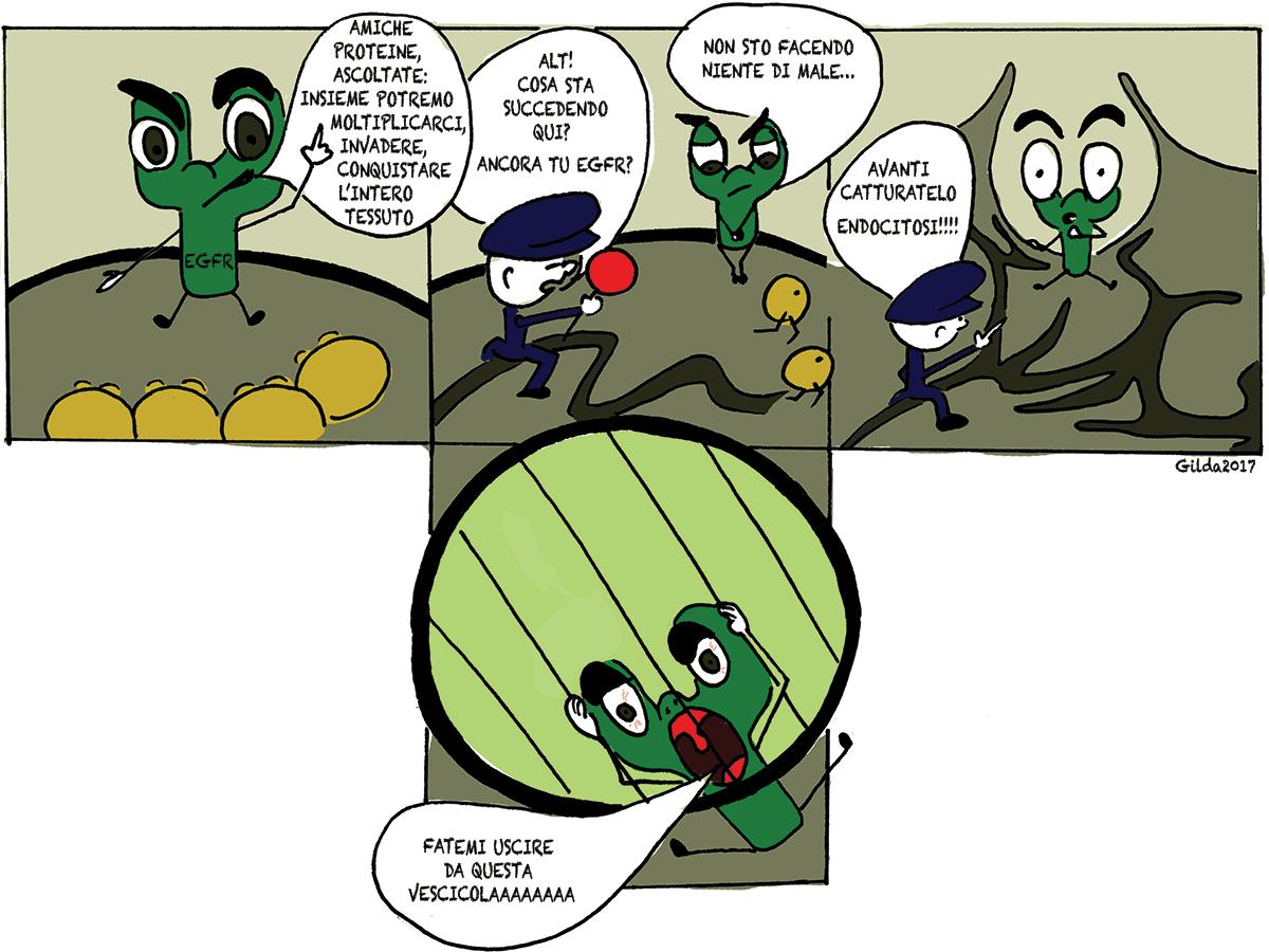 Reticulon