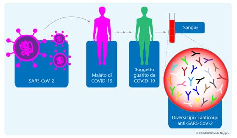 Progetto CoronAId: Linfociti B della memoria, Immunogenetica e Intelligenza artificiale per diagnosi e terapie Anti-COVID di precisione