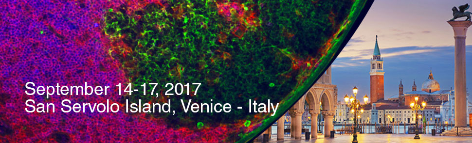 19th Iternational Conference on Lymphatic Tissues and Germinal Centres in Immune Reactions