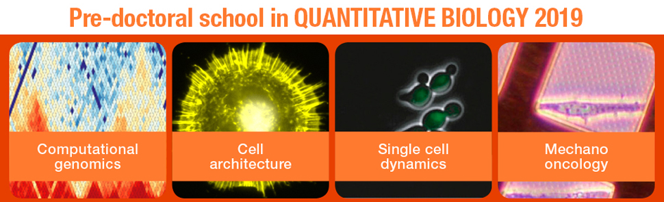 Pre-doctoral school in quantitative-biology